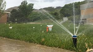 water saving tips for summer