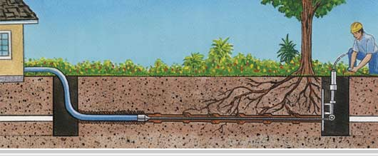 sewer line problems